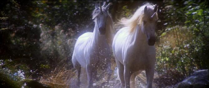 legend fairy and unicorn 2