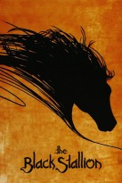 black-stallion2