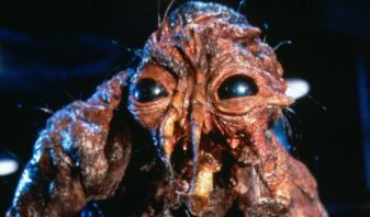 Freaky Romance the fly 3
