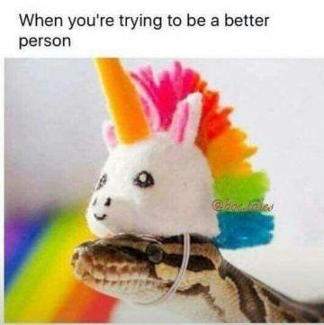 snake unicorn