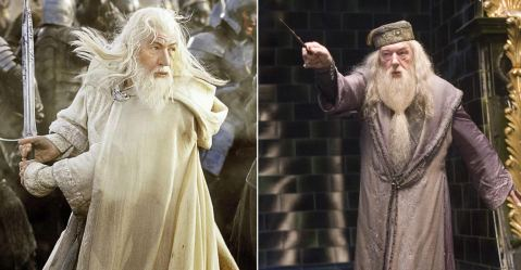Dumbledore or Gandalf 2